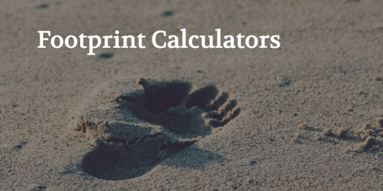 Quantifying Sustainability - Beyond Footprint Calculators